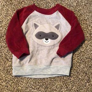 Raccoon shirt